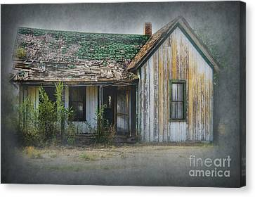 It's  A Long Story Canvas Print by Sandra Bronstein