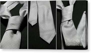 Canvas Print featuring the photograph It's A Tie - Triptych by Trish Mistric