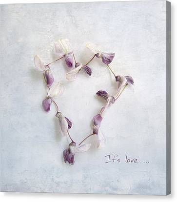 It's Love ... Canvas Print by Louise Kumpf