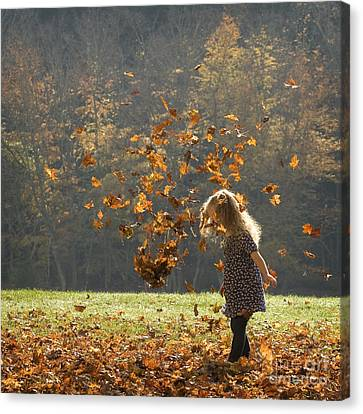 Canvas Print featuring the photograph It's Raining Leaves by Carol Lynn Coronios