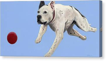 Its Riley's Ball Canvas Print