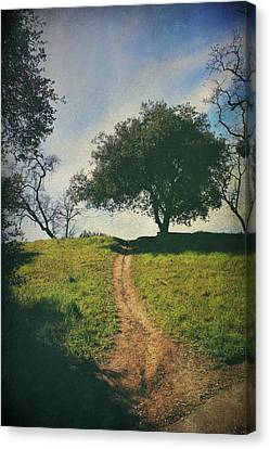 It's Time To Get Up That Hill Canvas Print by Laurie Search