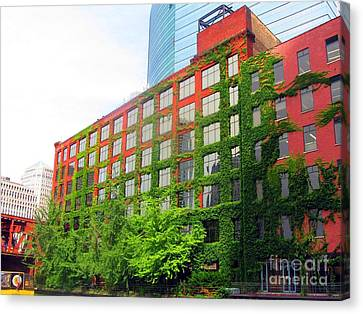 Ivy-covered Building On The Chicago River Canvas Print by Matthew Peek