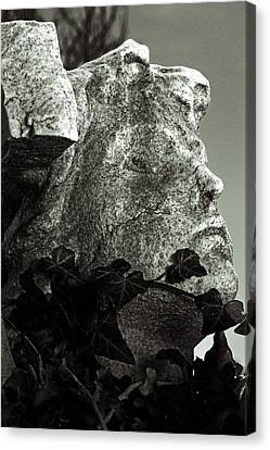 Ivy In Mourning Canvas Print