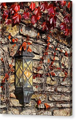 Ivy Lantern Canvas Print by Frozen in Time Fine Art Photography