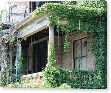 Canvas Print featuring the photograph Ivy Take Over by Cynthia Snyder