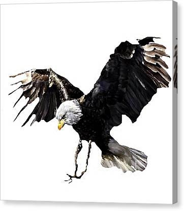 Shower Head Canvas Print - J6939 Broken Winged Bird Collection by Jill Walton