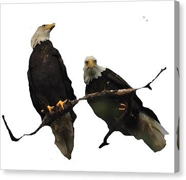 Shower Head Canvas Print - J6942 Broken Winged Bird Collection by Jill Walton