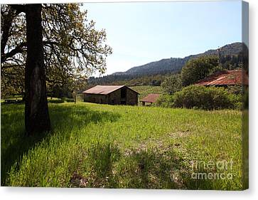 Jack London Stallion Barn 5d22056 Canvas Print by Wingsdomain Art and Photography