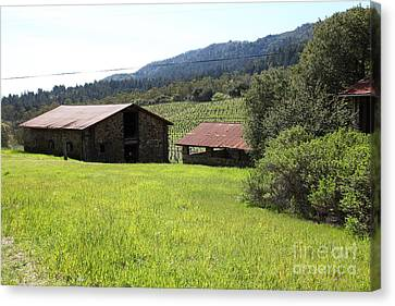 Jack London Stallion Barn 5d22058 Canvas Print by Wingsdomain Art and Photography