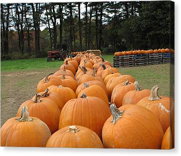 Farm Stand Canvas Print - Jack O Lanterns In Waiting by Barbara McDevitt