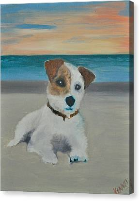Jack On The Beach Canvas Print by Kristen R Kennedy