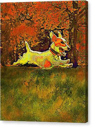 Jack Russell In Autumn Canvas Print