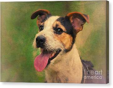 Jack Russell Terrier Portrait Canvas Print by Angela Doelling AD DESIGN Photo and PhotoArt