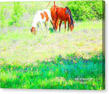 Canvas Print featuring the digital art Jack Smokey And Camelot Texas Spring A by Robert Rhoads