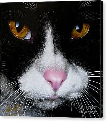 Jack The Cat Canvas Print by Jurek Zamoyski