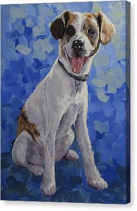 Jackaroo - A Pet Portrait Canvas Print by Karen Ilari