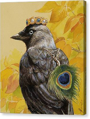 Jackdaw Triumphant Canvas Print by Tracie Thompson