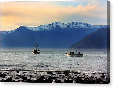 Canvas Print featuring the photograph Jackson Bay South Westland New Zealand by Amanda Stadther