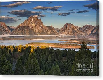 Jackson Lake Morning Canvas Print by Mark Kiver