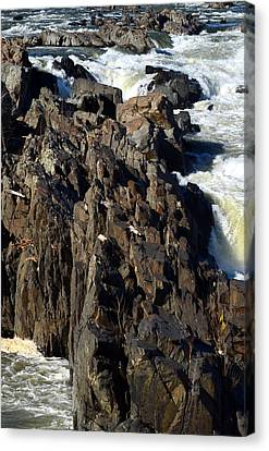 Jagged Waters Canvas Print by Cathy Shiflett