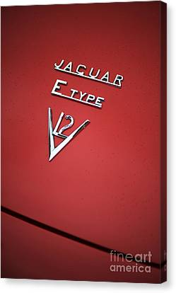Jaguar E Type V12 Abstract Canvas Print by Tim Gainey