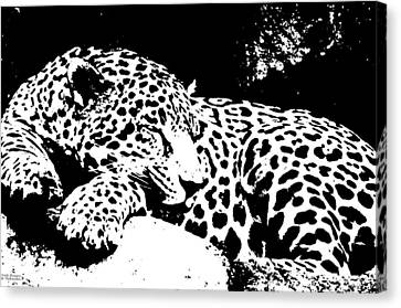 Jaguar In Reverse Canvas Print by Teresa Blanton