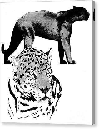 Jaguar Project Canvas Print by Joel Carrillo