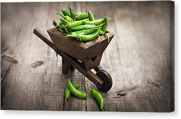 Jalapenos Chili Pepper In A Miniature Wheelbarrow Canvas Print by Aged Pixel