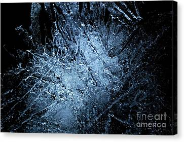 jammer Frozen Cosmos Canvas Print by First Star Art