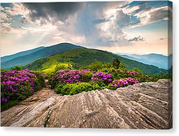 North Carolina Blue Ridge Mountains Landscape Jane Bald Appalachian Trail Canvas Print by Dave Allen