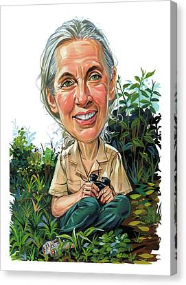 Chimpanzee Canvas Print - Jane Goodall by Art