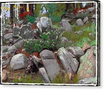 Janies' Rock Garden 1 Canvas Print by Craig Nelson