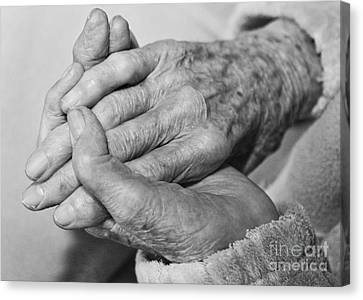 Jan's Hands Canvas Print
