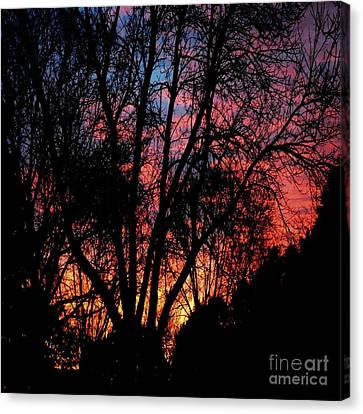 Canvas Print featuring the photograph January Dawn by Luther Fine Art