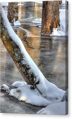 January Freeze Canvas Print