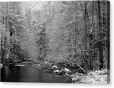 January Gift Canvas Print by Michael Eingle