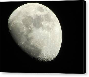 January Moon 1 Canvas Print