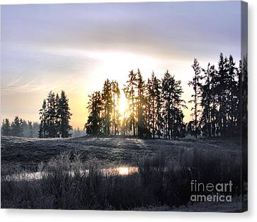 January Morning Canvas Print by Rory Sagner