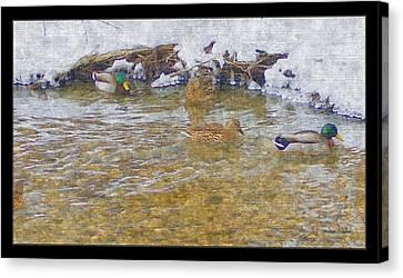 January Thaw At Riverside I Canvas Print by Rosemarie E Seppala