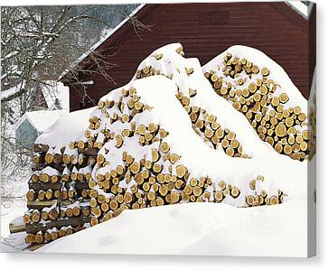 January Woodpile Canvas Print by Alan L Graham