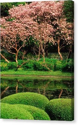 Japan, Tokyo Reflecting Pond, Imperial Canvas Print by Jaynes Gallery