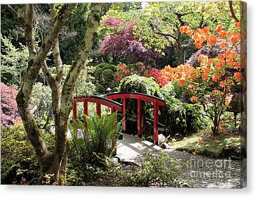 Japanese Garden Bridge With Rhododendrons Canvas Print by Carol Groenen