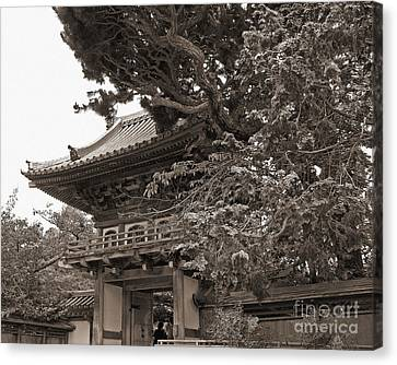 Japanese Tea Garden Pagoda In Sepia. Golden Gate Park Canvas Print by Connie Fox