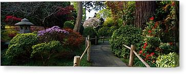 Japanese Tea Garden, San Francisco Canvas Print by Panoramic Images