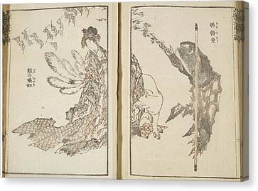 Japanese Woman With White Fox And Monkey Canvas Print by British Library