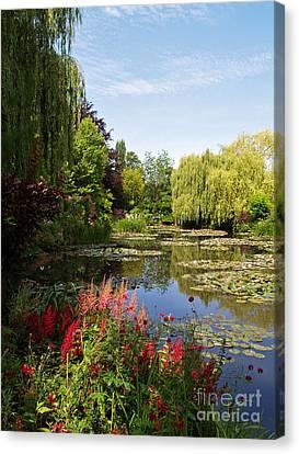 Jardin D'eau Canvas Print by Alex Cassels