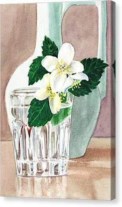 Jasmine Canvas Print by Irina Sztukowski