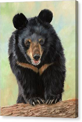 Jasper Moon Bear - In Support Of Animals Asia Canvas Print by David Stribbling