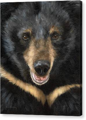 Jasper Moon Bear - In Support Of Animals Asia Canvas Print